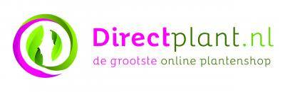 logo direct plant van rijs
